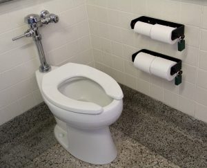 A new, water-efficient toilet in Tripp Hall.