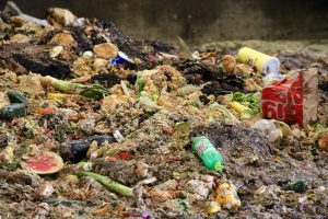 Pile of food waste illustrating contamination issues. Photo by Trina La Susa.